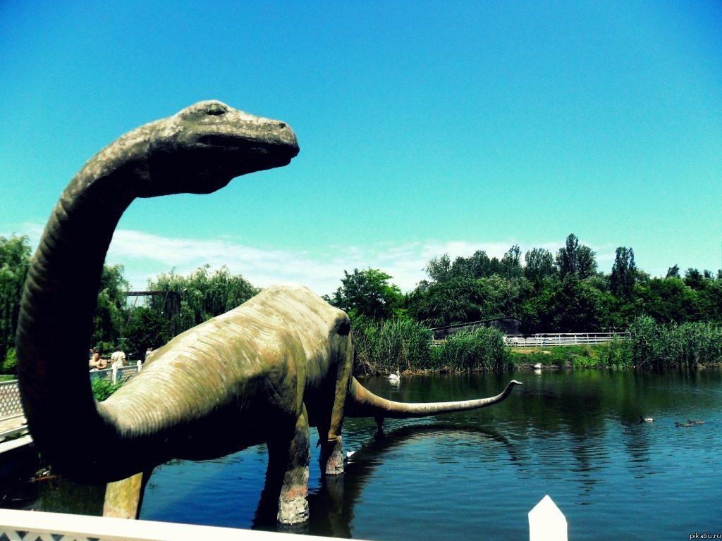 Зоопарк из Новочеркасска